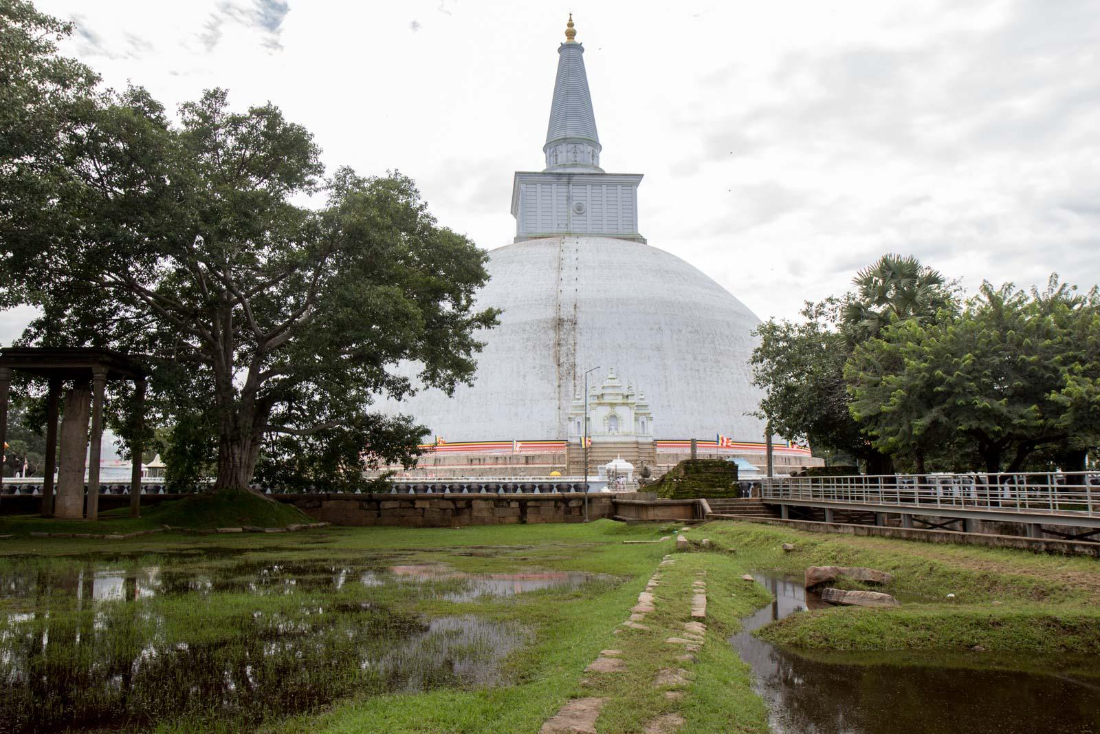 جاذبه های سریلانکا