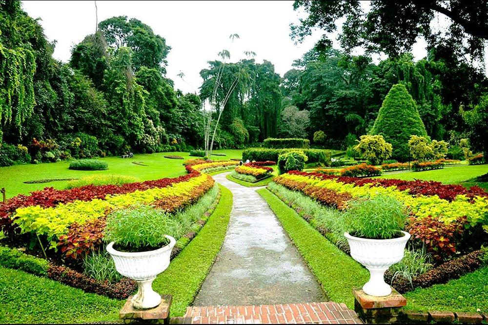 باغ گیه شناسی در سریلانکا